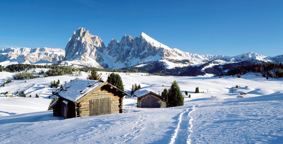 Sciare e sci di fondo all'Alpe di Siusi
